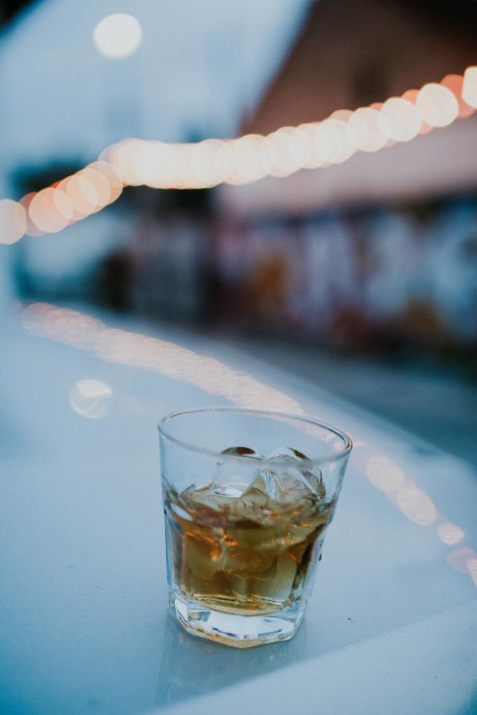 viski-sajam-whisky-fair-2017-brend-ambasador-nichim-izazvan (2)